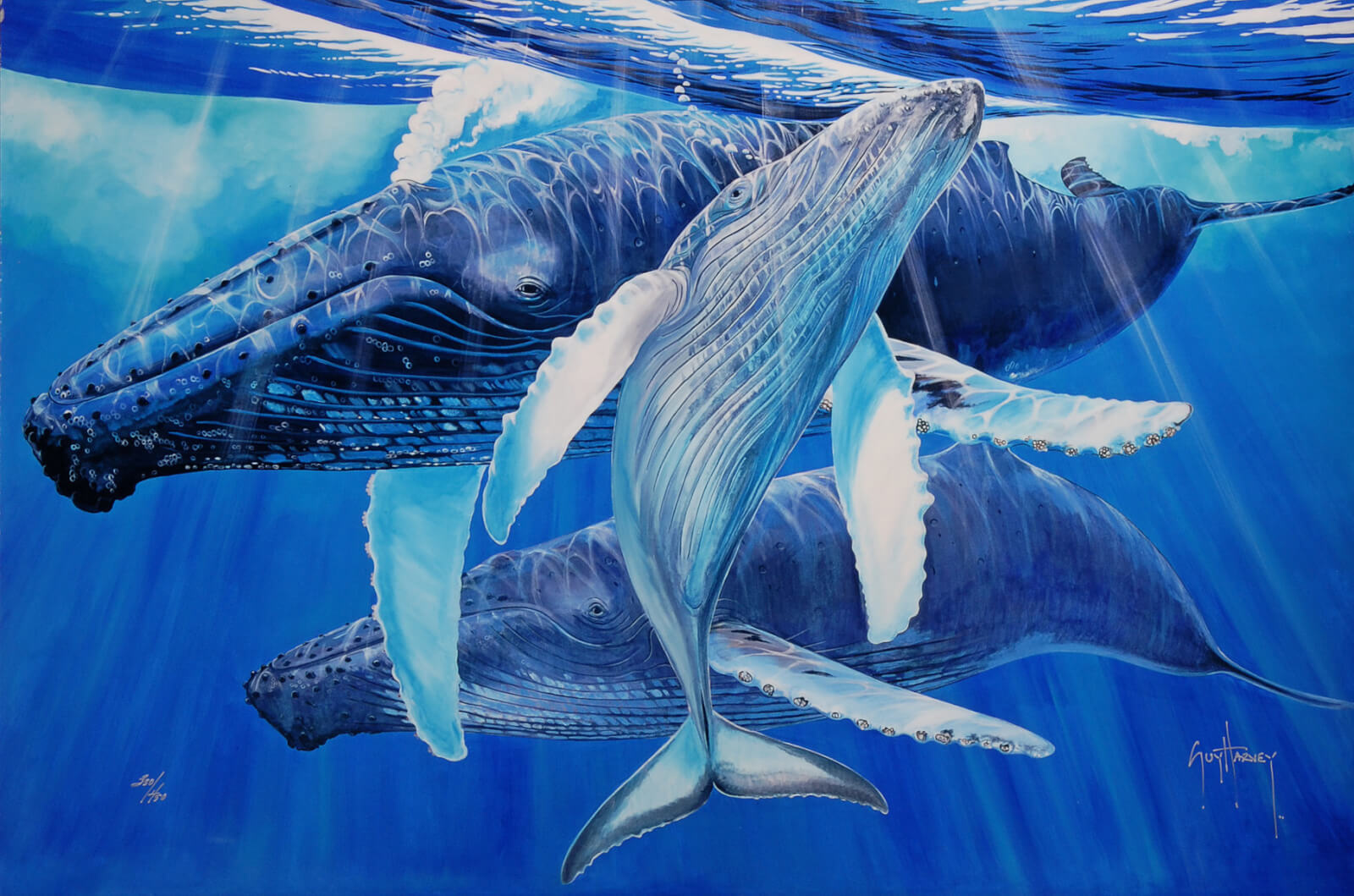 """Mother's Touch"" (2015), Guy Harvey"