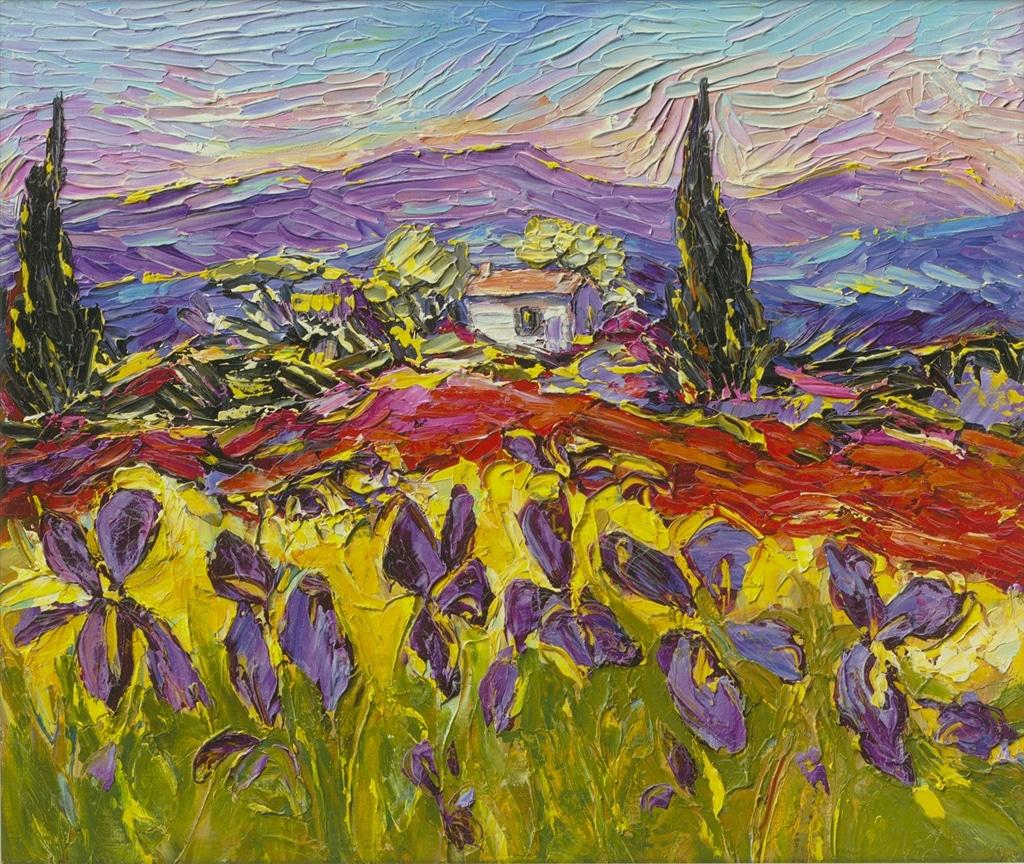 """""""Paysages au Iris"""" (2014), Duaiv"""