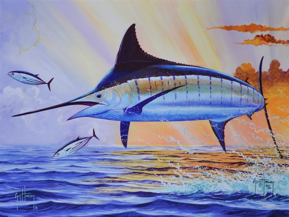 Sunset Blue 2015 Guy Harvey Park West Gallery