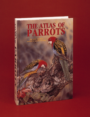 Graeme Stevenson Atlas of Parrots Park West Gallery
