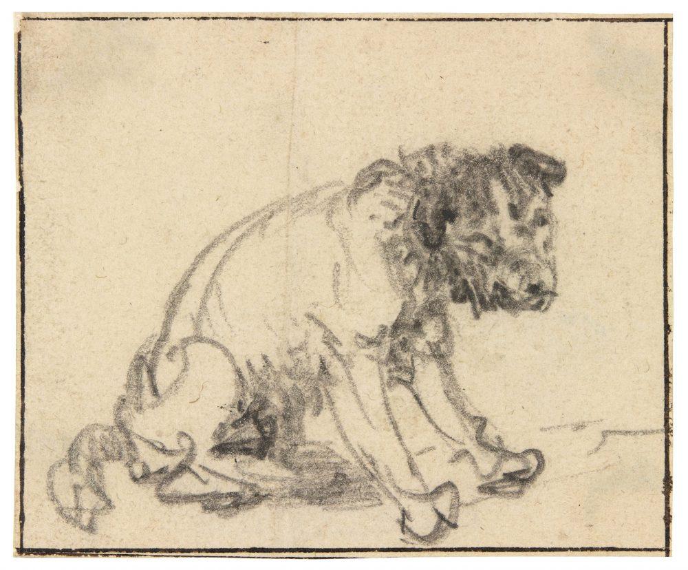 Rembrandt dog drawing Herzog Anton Ulrich Museum