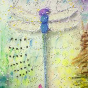 Dragonfly Tim Yanke Park West Gallery