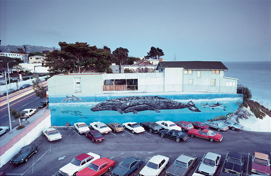 "Wyland's first ""Whaling Wall"" mural, ""Gray Whale and Calf."" It was originally finished in 1981, but was repainted in 1986. (Image courtesy of the Wyland Foundation)"