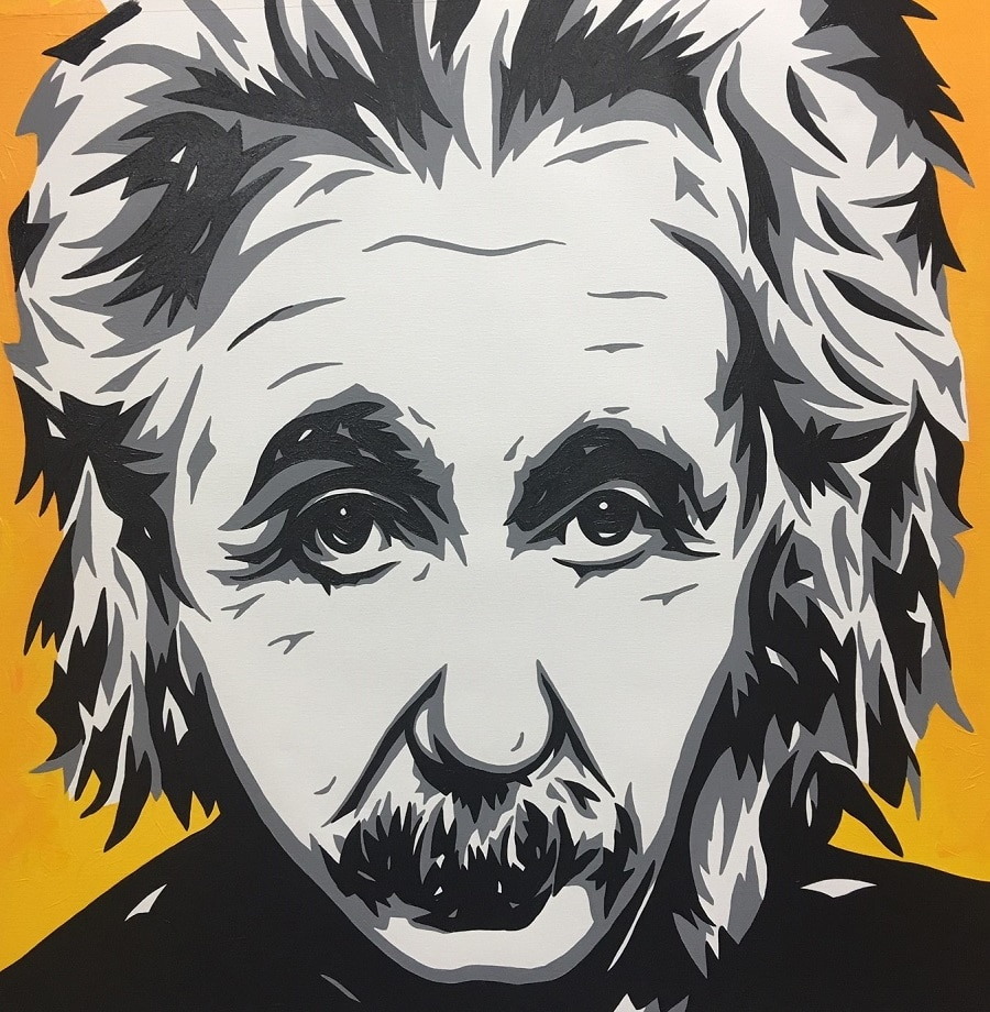 Albert Einstein, Allison Lefcort