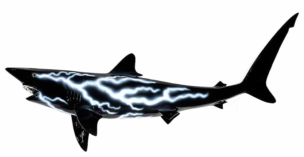 """Black Tip Shark Lightning,"" Cris X"